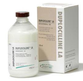 Duplocilline injectie onderhuids gegeven is veilig te gebruiken bij het konijn.