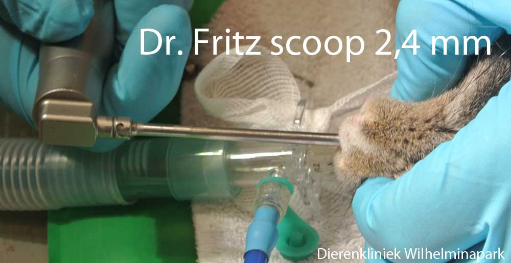 Dr. Fritz video endoscoop
