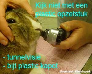 Kijk niet met een plastic opzetstuk in de bek van het konijn om de kiezen te inspecteren