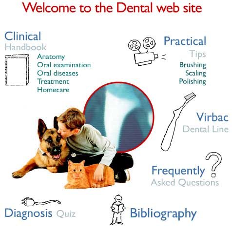 Virbac Dental Health